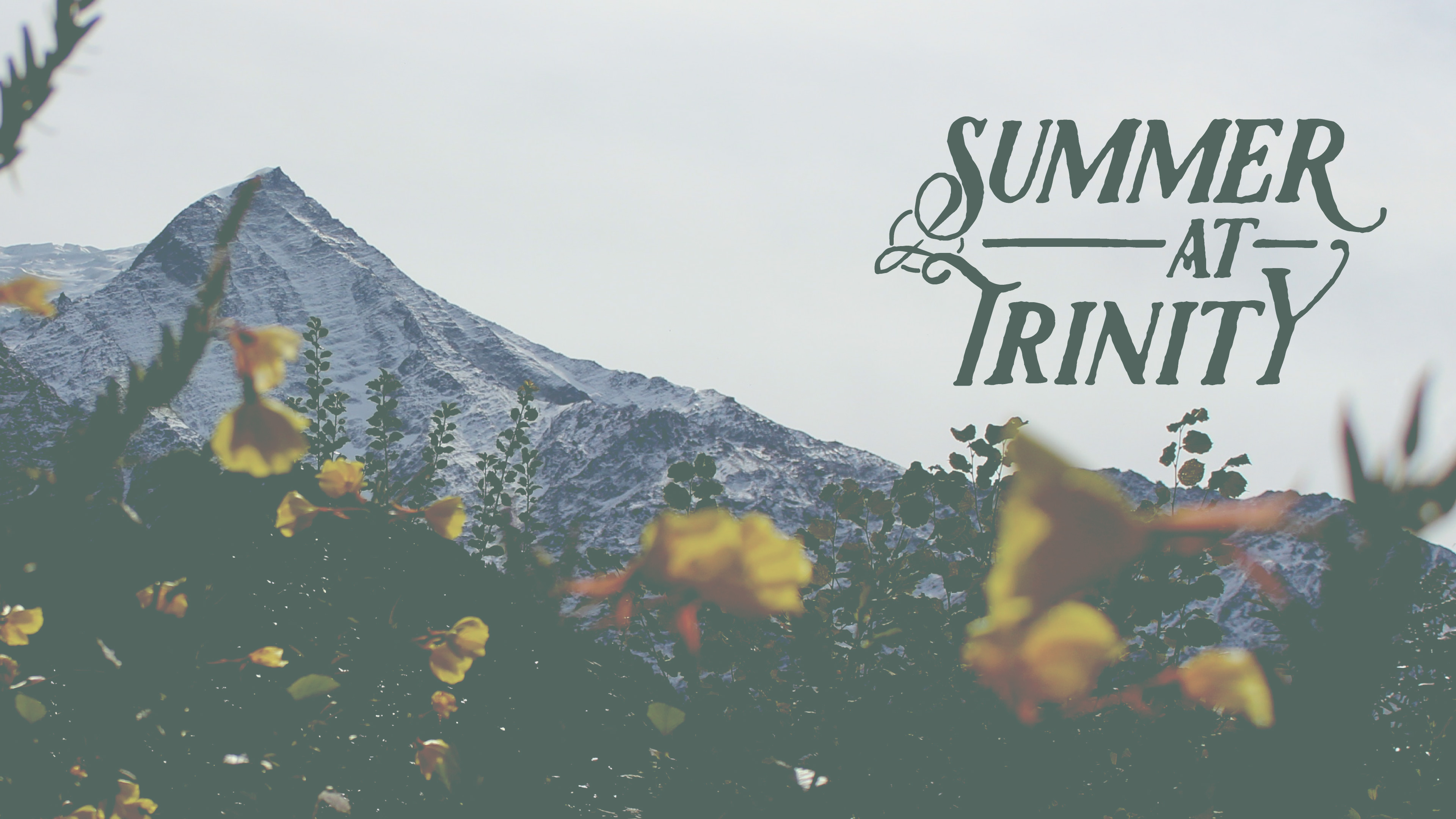 Summer at Trinity